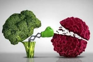 饮食方法中的抗癌神器——地中海饮食