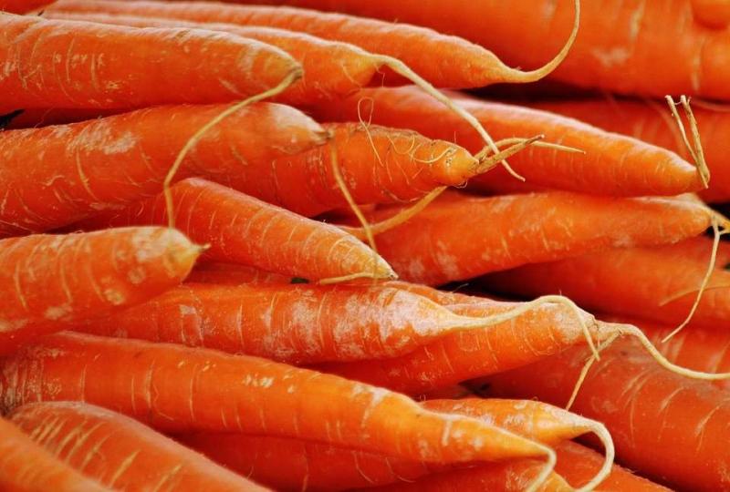 熟胡萝卜的功效与作用揭秘熟胡萝卜的小秘密